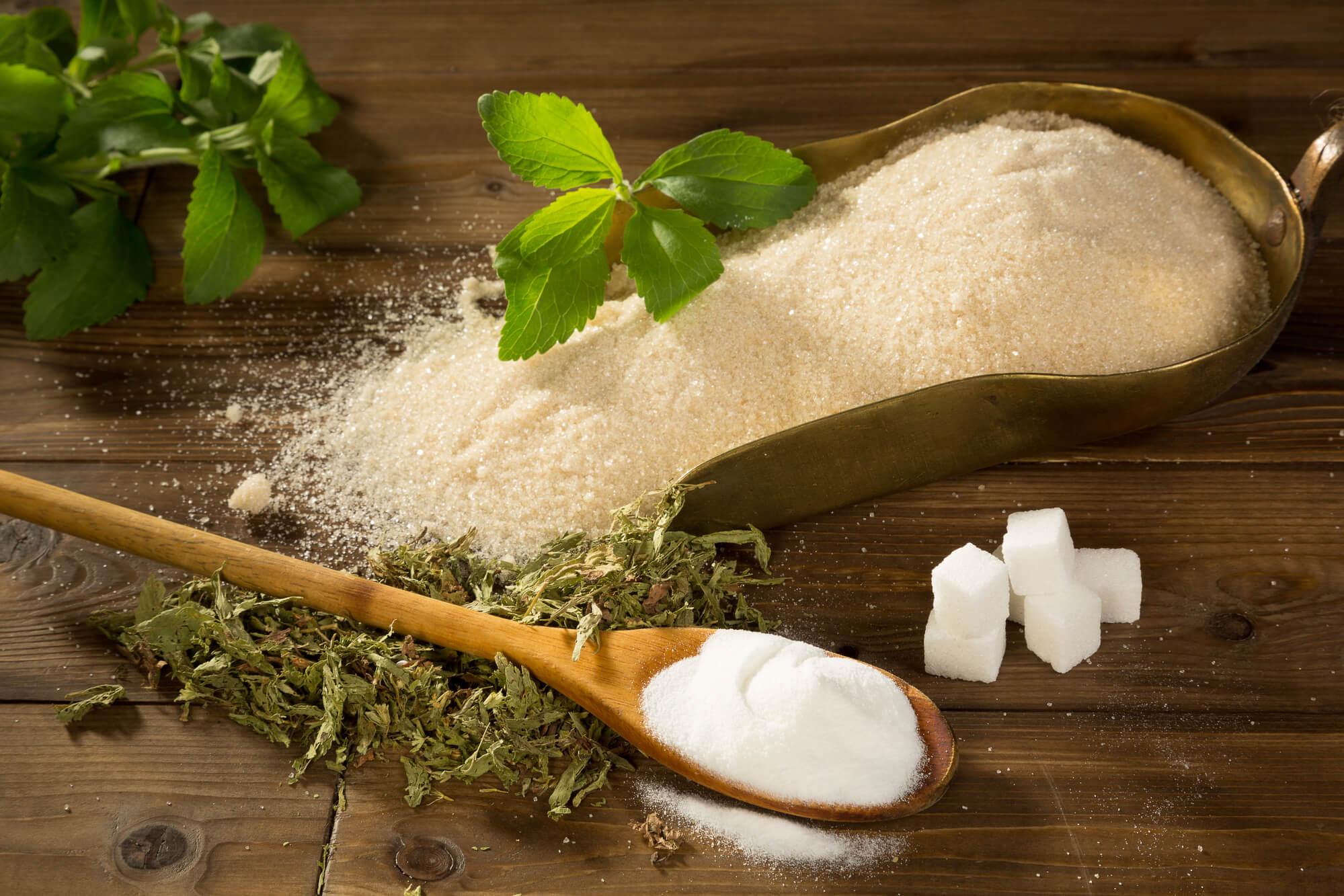 Stevias bivirkninger - 7 bivirkninger ved sukkerplanten Stevia